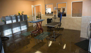 Clean Salon environment